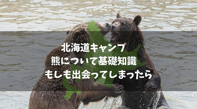 ら北海道キャンプ 熊(ヒグマ)について基礎知識 もしも出会ってしまったら